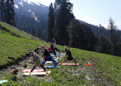 100hr yin yoga teacher training india