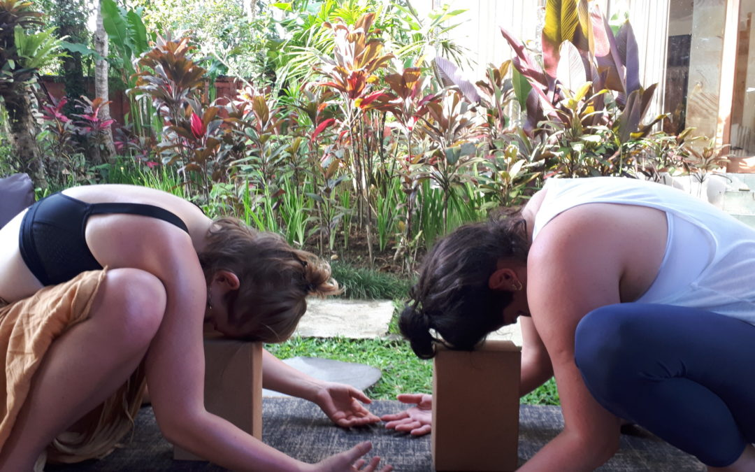 Yoga Journey: Relinquishing Control