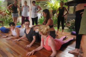 yin yoga teacher training neuroplasticity meditation