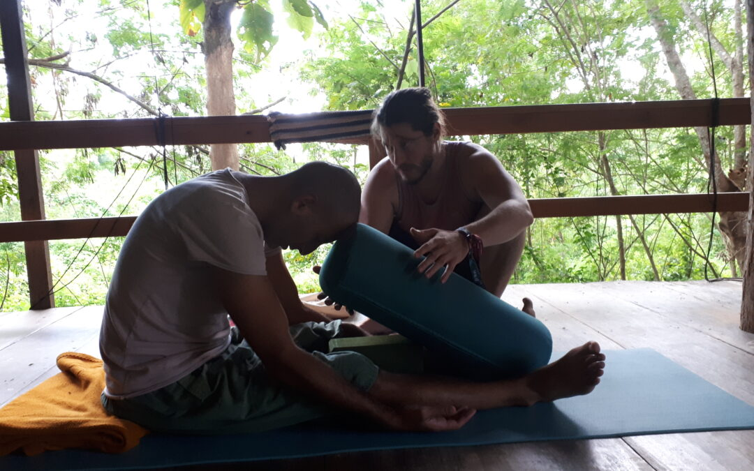 The Difference in Anatomy in Yin Yoga and Hatha Yoga